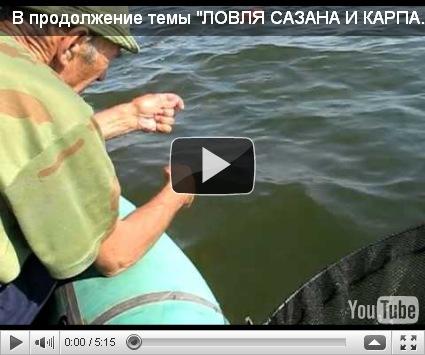 рыбалка карпа на бутылку